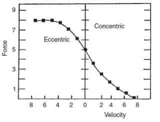 Relación velocidad y producción de fuerza
